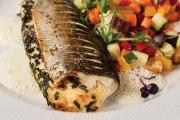 Рибата се нарежда сред най-добрите антидепресанти