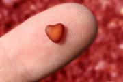 МЗ ще плаща изследванията на потенциални живи донори