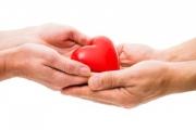 От Агенцията по трансплантации искат промени в закона за донорството