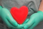 48 са трансплантациите от началото на годината досега
