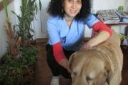 Д-р Елена СИРАКОВА, управител на ветеринарна клиника Vita Very-Стара Загора: Зачести ракът при домашните любимци