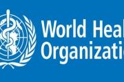 СЗО обяви вируса Зика за глобална заплаха