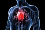 """Сърдечносъдовите заболявания се """"подмладяват"""""""