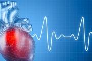 Сърдечносъдовите болести остават причина номер едно за смъртни случаи у нас