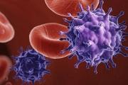 Момче от Южна Африка пребори вируса на СПИН