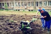 Младежи със специални потребности отглеждат биозеленчуци