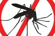 РЗИ-Стара Загора прави проби за ларви на комари
