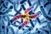 Хора с мутации в гените не могат да се заразят с коронавирус