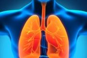 """Как помагат на белите дробове """"вентилаторите"""""""