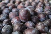 Сините сливи са сред първите култивирани плодове
