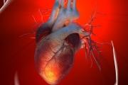Всеки пети у нас развива сърдечна недостатъчност