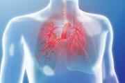 На 5 май отбелязваме Световния ден на пулмоналната хипертония
