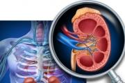 Готвят единни правила за диагностика и лечение на диабетна нефропатия